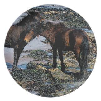 Södra för Dartmoor för Devon strand två ansa ponny Tallrik