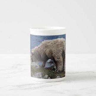 Södra Lamb för Devon lång ullfår som betar på Tekopp