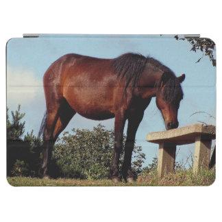 Södra sniffa för den Devon Dartmoor ponnyn tar av iPad Air Skydd