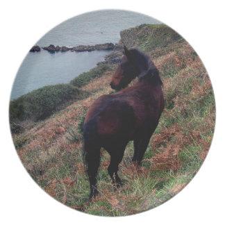 Södra tittar Devon kustenDartmoor ponny Tallrik