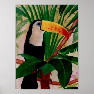 Södra Toucan fågel - konst för amerikandjungelfåge Poster