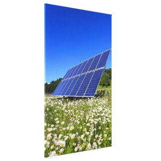 Sol- paneler och grön äng canvastryck