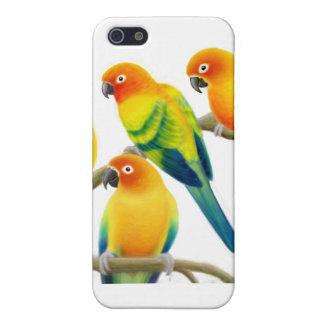 Solen Conure mekaniskt säga efter iphone case iPhone 5 Fodral
