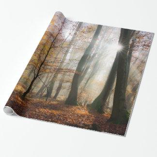Solen Rays den Mystic dimmiga skogen, gåva Presentpapper