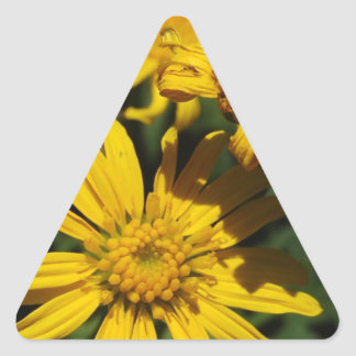 Soliga dagblommor triangelformat klistermärke