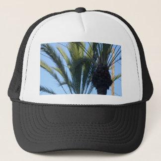 Soliga palmträd keps