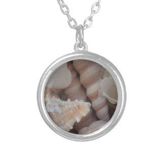 Soliga sommarsnäckskal, kärlek för silverpläterat halsband