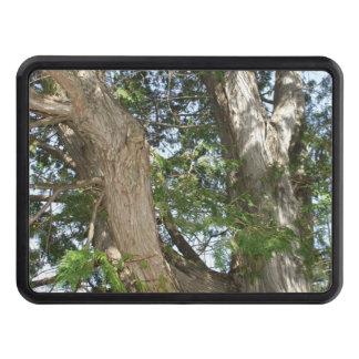 Solljus på trädGren-Jord dag Skydd För Dragkrok