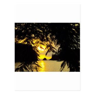 Solnedgång 1 Costa Rica Vykort