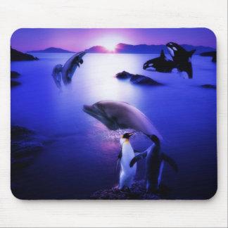 Solnedgång för hav för valdelfinpingvin mus matta