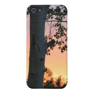 Solnedgång i träden iPhone 5 fodral