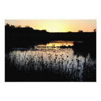 Solnedgång över damm fototryck