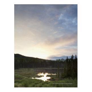 Solnedgång över ett dimmigt damm vykort