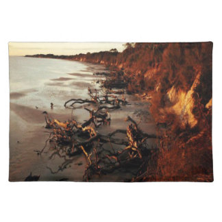 Solnedgång på Driftwood Bordstablett