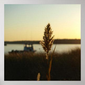 Solnedgång på hamnkanvastrycket poster