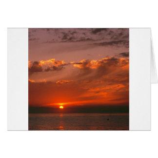 SolnedgångBloodorange Stilla hav Kalifornien Hälsningskort