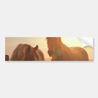 Solnedgånghästbildekal Bildekal
