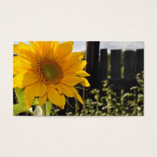 Solros och staket visitkort