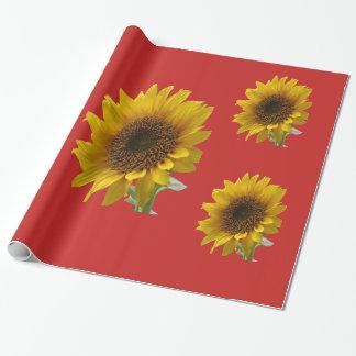 Solros som slår in papper presentpapper