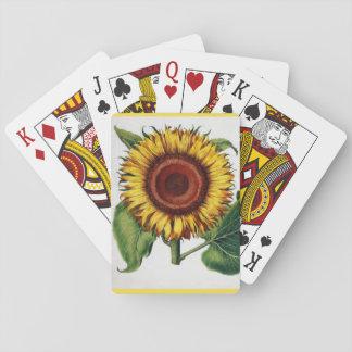 Solrosen Spel Kort