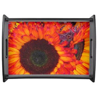 Solrosor avfyrar blommor B Serveringsbricka