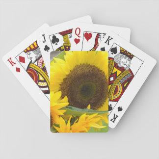 Solrosor i blom spel kort