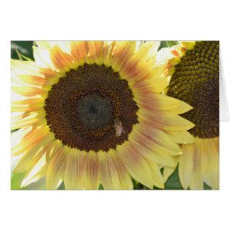 Solrosor med biet hälsningskort