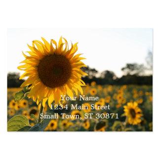 Solrosträdgård. Härliga blommor Set Av Breda Visitkort