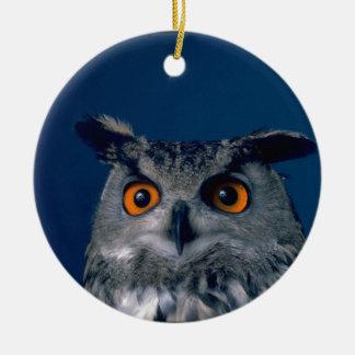 Som man har råd med ugglahelgdaggåva rund julgransprydnad i keramik