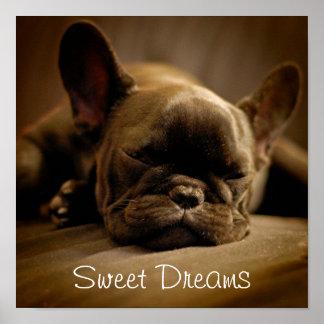 Sömnig fransk bulldogg poster