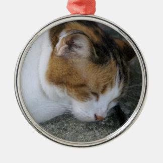 Sömnig kattunge julgransprydnad metall