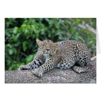 Sömnig Leopard Hälsningskort