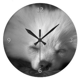 Sömnig Pomeranian valp Stor Klocka