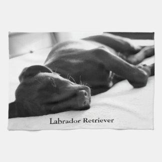 Sömnig valp för Labrador Retriever Kökshandduk