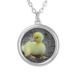 Söt fluffig Ducklinggult Halsband Med Rund Hängsmycke