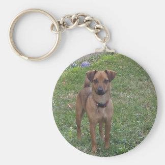söt hund rund nyckelring