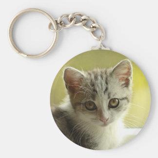 Söt kattunge rund nyckelring