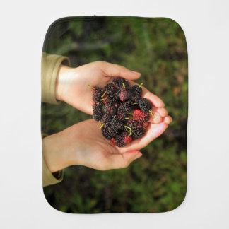 Söta handfullmullbärsträdbär som är nya och bebistrasa