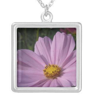 Söta rosa Cosmocosmos, cosmo, bi som är botaniskt, Silverpläterat Halsband