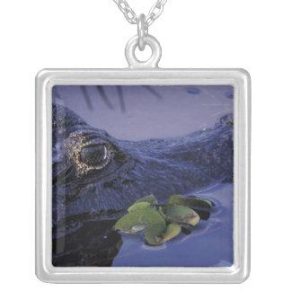 South America Brasilien, amasonRainforest, Silverpläterat Halsband