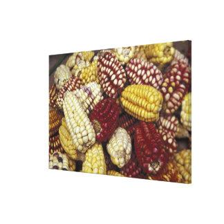South America Peru maj, Maize Canvastryck