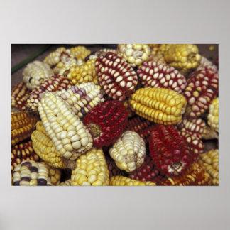 South America Peru maj, Maize Poster