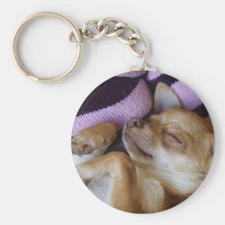 Sova chihuahuaen rund nyckelring