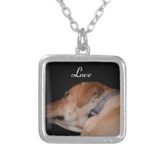 Sova den Labrador retrieveren Silverpläterat Halsband
