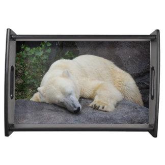 Sova den polara björnen frukostbricka