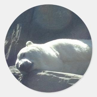 Sova den polara björnen runt klistermärke