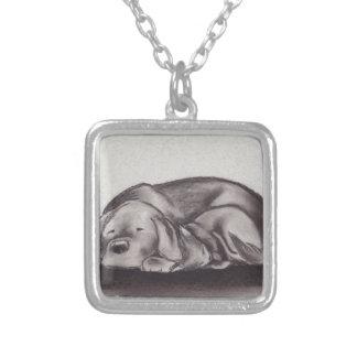 Sova för hund- & kattSnuggle Silverpläterat Halsband