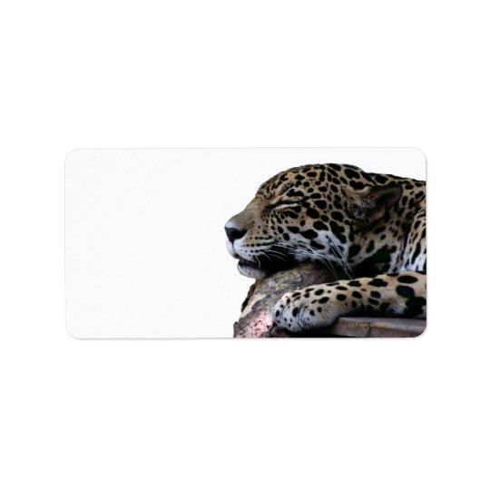 Sova jaguar ingen bakgrund adressetikett