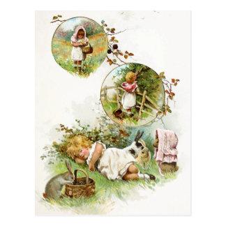 Sova och drömma av kaninkaniner vykort