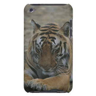 Sova tigern barely there iPod skal